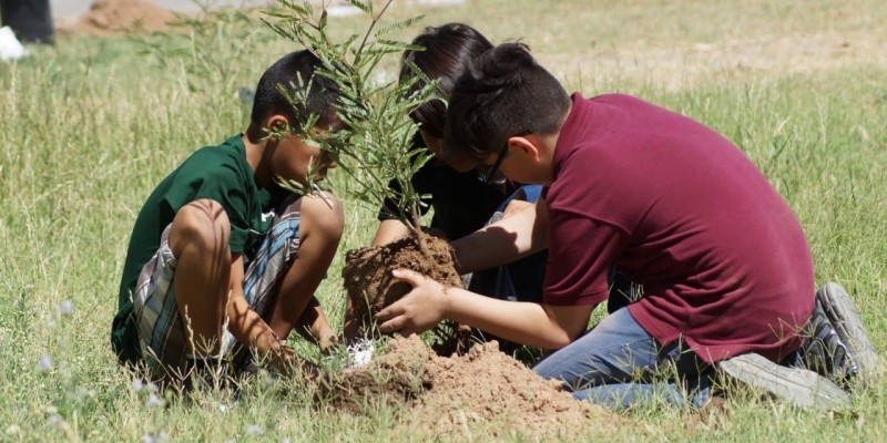Continúa campaña de reforestación en San Luis