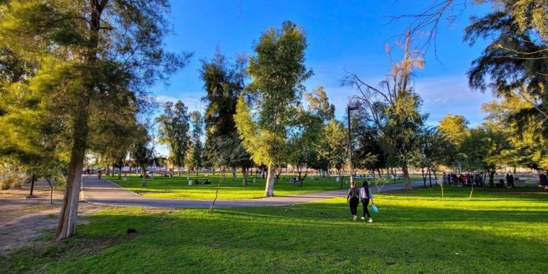 Es saludable estimular actividades al aire libre, DSPM