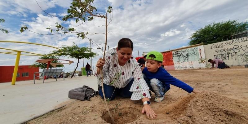 Realizan campaña de reforestación por Día del Árbol