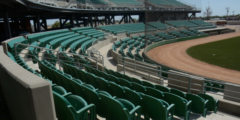 Ultiman detalles para el Estatal de Beisbol